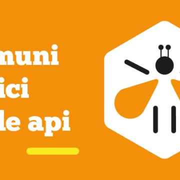 """L'iniziativa """"Comune amico delle api"""" presentata al convegno di ANCI Veneto"""
