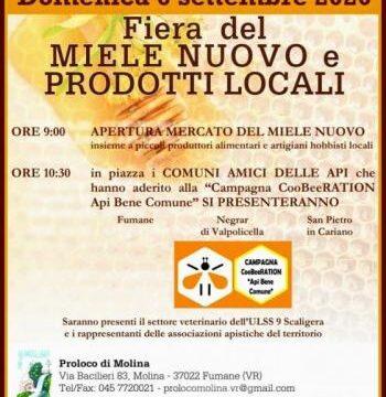 La Fiera del Miele Nuovo e prodotti locali e Molina