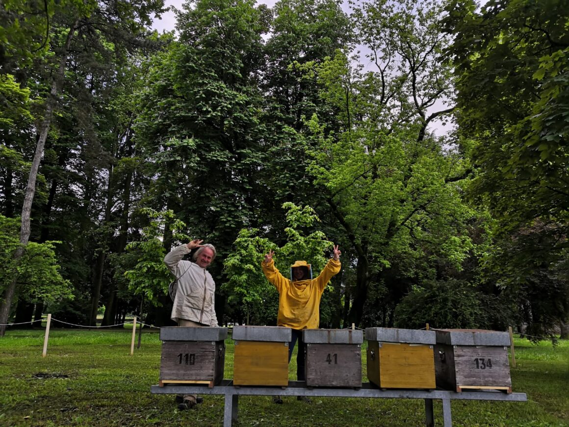 Comune di Valdagno (VI). Inaugurazione apiario didattico  in occasione della Giornata internazionale dell'ape 2021