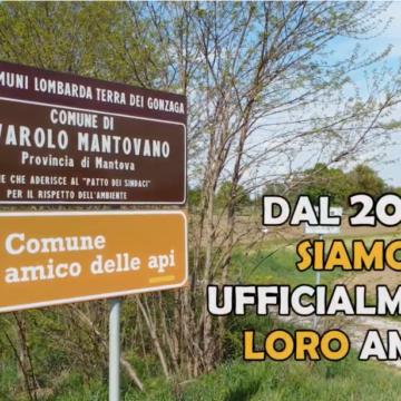 Il nuovo video che presenta la strada delle Api costituita a Rivarolo mantovano (MN) nell'ambito del progetto ADA Comuni Amici delle Api